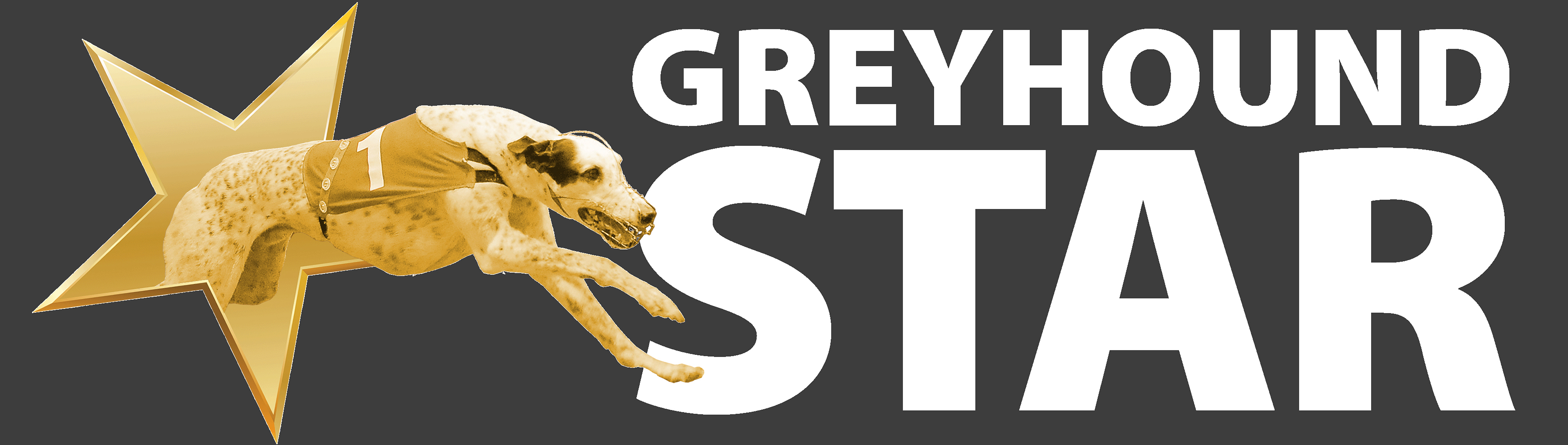 DON'T FORGET TO DOWNLOAD THE APP - Greyhound Star | News ...